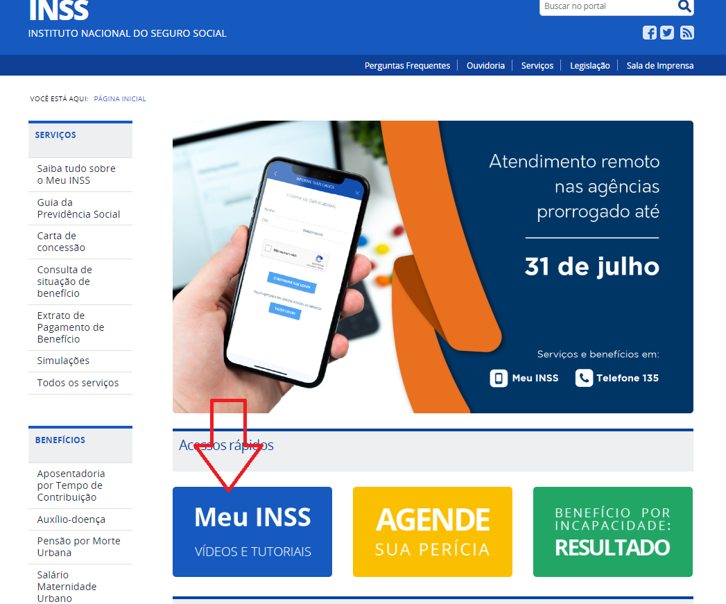 Consulta Do Número Do RG On-line Com O CPF